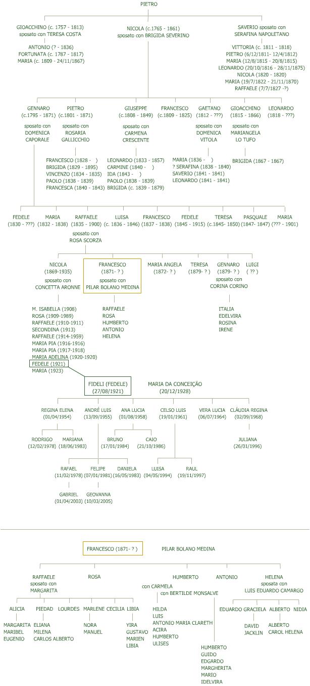 aggiornamenti albero genealogico